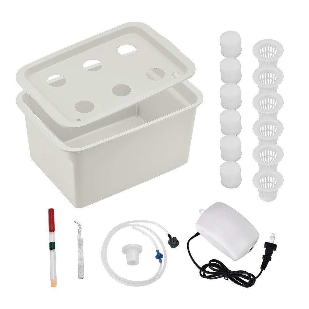 Basic Hydroponics Setup
