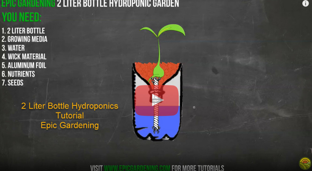 2-liter-bottle-hydroponics-tutorial