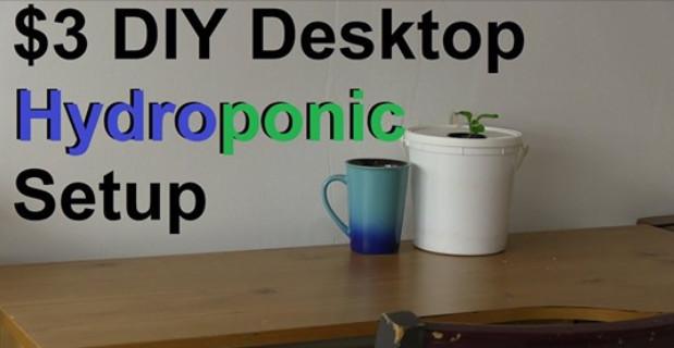 3-diy-desktop-hydroponic-setup