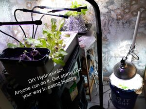 DIY Hydroponics Anyone Can do it