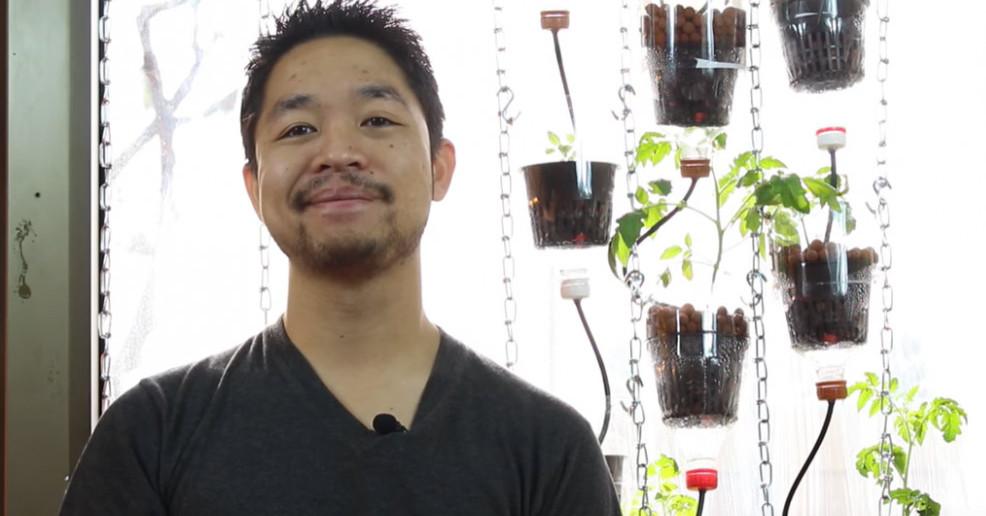 diy-window-hydroponics