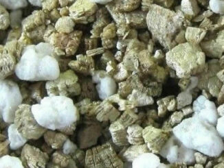 perlite-and-vermiculite